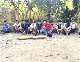 Triệt phá một tụ điểm đá gà lớn ở Đồng Nai