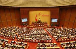 TTXVN tích cực thông tin, tuyên truyền về bầu cử ĐBQH khóa XV và đại biểu HĐND