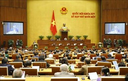 Thông cáo báo chí số 02, Kỳ họp thứ 11, Quốc hội khóa XIV