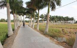 Huyện Tân Trụ, Long An về đích nông thôn mới