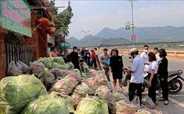 Tiêu thụ nông sản trong tình huống khẩn cấp - Bài 3: Nông sản vượt bão dịch