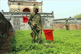 Để Việt Nam không còn tác động của bom mìn - Bài 1: Nỗ lực khắc phục hậu quả