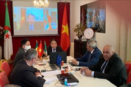 Tăng cường hợp tác thương mại và đầu tư Việt Nam - Algeria - Senegal 2021