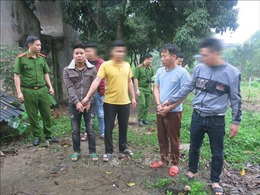 Thái Nguyên: Bắt 2 đối tượng trộm trâu trên địa bàn thành phố Thái Nguyên