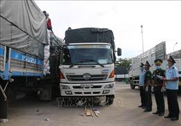 Hoạt động xuất, nhập khẩu tại các cửa khẩu, cảng của tỉnh An Giang vẫn diễn ra bình thường