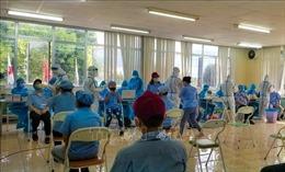 Đà Nẵng: Tiếp tục xét nghiệm SARS-CoV-2 cho trên 52.300 lao động