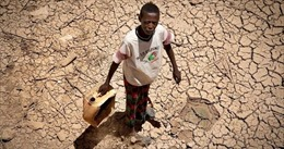 Hạn hán khiến 2,73 triệu người tại Somalia đối mặt với khủng hoảng lương thực