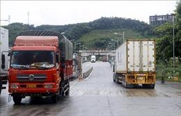 Đề nghị tiêm vaccine cho lái xe chở hàng xuất khẩu qua cửa khẩu biên giới