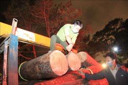Xác định nhóm đối tượng phá rừng phòng hộ ở Khu du lịch Tuyền Lâm – Đà Lạt