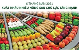 6 tháng năm 2021: Xuất khẩu nhiều nông sản chủ lực tăng mạnh
