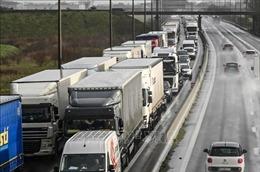 Các nước tạo 'luồng xanh' để chuỗi cung ứng hàng hóa không bị 'đứt gãy'