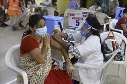 Ấn Độ sẽ cung cấp vaccine cho COVAX sau khi hoàn thành tiêm chủng trong nước