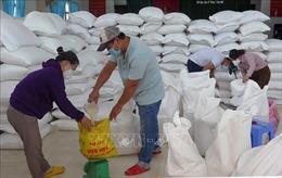 Phú Yên: Hoàn tất cấp gạo hỗ trợ của Chính phủ cho người dân gặp khó khăn