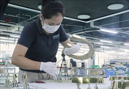 Đồng Nai thành lập tổ công tác đặc biệt tháo gỡ khó khăn cho doanh nghiệp