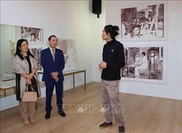 Họa sĩ Bỉ gốc Việt tìm về nguồn cội qua những bức tranh