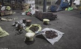 Bên trong nhà máy chế bom 'mẹ của quỷ Satan' của khủng bố ở Sri Lanka
