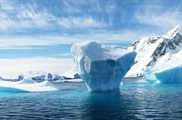 Triệu phú UAE định kéo băng từ Nam cực về Trung Đông