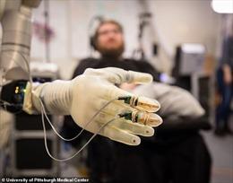 Cuộc cách mạng lớn nhất của nhân loại: Con người tích hợp công nghệ?