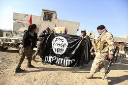 5 lý do khủng bố IS vẫn rình cơ hội trỗi dậy