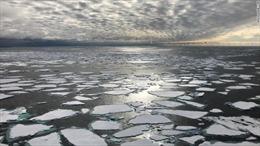 Nhiệt độ các đại dương trên thế giới vẫn ở mức nóng nhất trong lịch sử