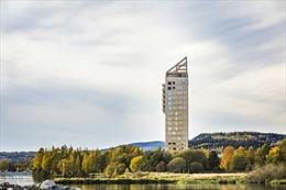 Cuộc cách mạng nhà chọc trời làm bằng gỗ trên thế giới