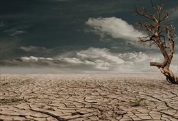 Từ cuộc chiến chống COVID-19 nghĩ về cuộc chiến chống biến đổi khí hậu