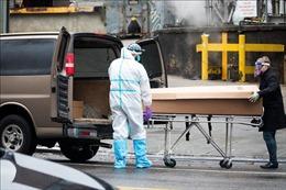 Người chết vì đại dịch COVID-19 ở Mỹ sẽ nhiều hơn trong chiến tranh