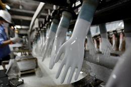 Những tỷ phú mới nổi từ thủ phủ sản xuất găng tay Malaysia
