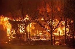 Lý do cháy rừng ở California năm 2020 nghiêm trọng nhất lịch sử