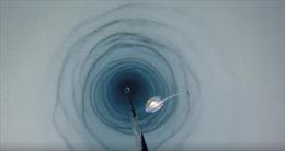 Tình cờ phát hiện sinh vật lạ ở sâu dưới thềm băng Nam Cực
