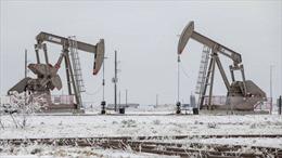 Tại sao thời tiết lạnh bất thường ở Texas có thể gây khủng hoảng dầu mỏ toàn cầu?