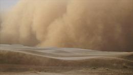 Video bão cát kinh hoàng tràn qua Saudi Arabia và Qatar