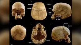 Giải mã bí ẩn về hộp sọ người trong hang sâu