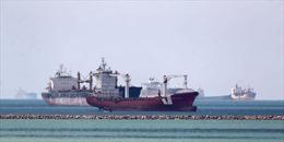 Châu Âu lo tàu thuyền từ kênh đào Suez cập cảng cùng lúc, gây ùn ứ
