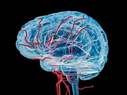 Bí ẩn căn bệnh rối loạn não ở Canada, ủ bệnh tới 2 năm