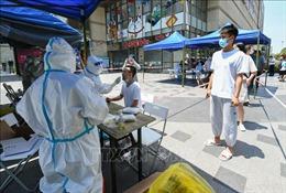 COVID-19 tới 6h sáng 30/7: Mỹ có trên 79.000 ca mắc mới; Trung Quốc bùng ổ dịch ở Nam Kinh