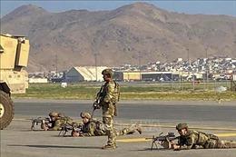 Hai nghị sĩ Mỹ bất ngờ xuất hiện ở sân bay Kabul