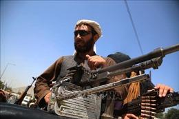 Taliban cho người dân Kabul đúng một tuần để giao nộp hết vũ khí