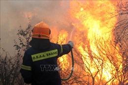 Sau lũ lụt, châu Âu lại chìm trong nắng nóng kỷ lục và cháy rừng dữ dội