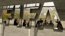 FIFA hoãn nhiều giải World Cup vì dịch COVID-19