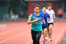 Hành trình đến SEA Games 31: Thể thao Việt Nam tập trung hơn 1.100 lượt vận động viên cho các mục tiêu lớn