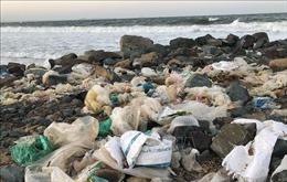 Bãi biển thành phố Tuy Hòa ngập rác sau mưa
