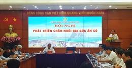 Đẩy mạnh phát triển các loài gia súc ăn cỏ để phù hợp thực tiễn Việt Nam