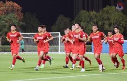 Tuyển Việt Nam: Tránh ảo tưởng ở sân chơi World Cup