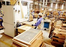 Khi doanh nghiệp ngành gỗ chủ động góp sức chống COVID-19