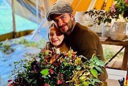 David Beckham 'gây sốt' với hình ảnh làm vườn cùng cô con gái 9 tuổi Harper