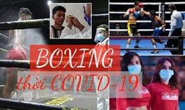 Boxing thời COVID-19 thi đấu theo cách không ai tưởng