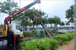 Cẩn trọng sử dụng điện trong mùa mưa bão
