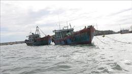 Bình Định còn 555 tàu cá đang nằm trong vùng nguy hiểm