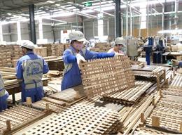 Ngành gỗ Việt trở về 'sân nhà', chọn con đường kinh doanh online để cầm cự trong dịch COVID-19